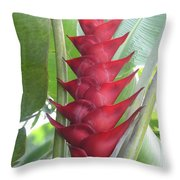 Heliconia Hot Flash Throw Pillow