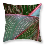 Heliconia Leaf Throw Pillow