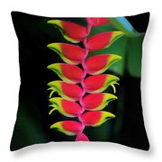 Heliconia Lobster Claw Throw Pillow