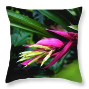 Heliconia Subulata - Wild Plant Series Throw Pillow