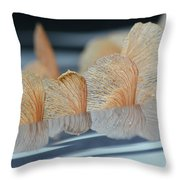 Helicopter Reflection Throw Pillow