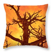 Hell Throw Pillow