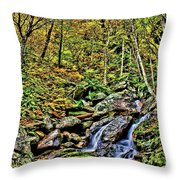 Hellbrook Cascades In Autumn Throw Pillow