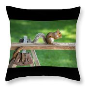 Hello Are You Gonna Eat All That? Chipmunk And Squirrel Throw Pillow