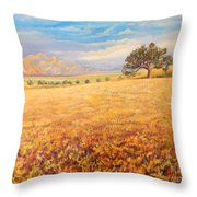 Hello Namibia Throw Pillow