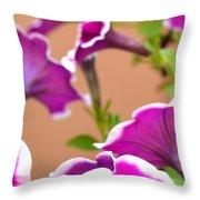 Hello Petunia Throw Pillow