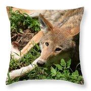 Hello Wolf Throw Pillow