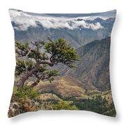 Hells Canyon Throw Pillow