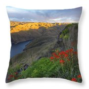 Hells Canyon View Throw Pillow