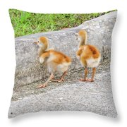 Help Me. Give Me A Boost					 Throw Pillow