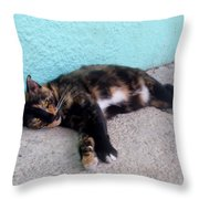 Hemingway Cat Throw Pillow