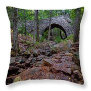 Hemlock Bridge Throw Pillow