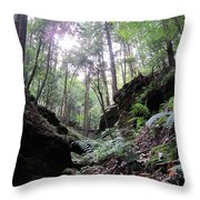 Hemlock Gorge Throw Pillow