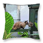 Hemmingway Cats Throw Pillow