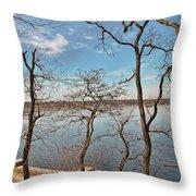 Hempstead Harbor Through The Trees Throw Pillow