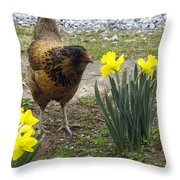Hen And Daffodils Throw Pillow