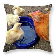 Hen With Her Yellow Chickens Throw Pillow