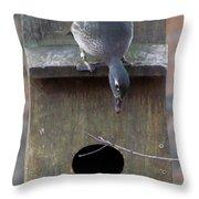 Hen Wood Duck  Throw Pillow