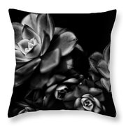 Hens And Chicks 2 Throw Pillow