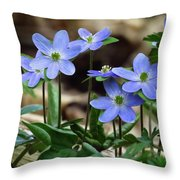 Hepatica Blue Throw Pillow