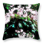 Her Diadem Throw Pillow by Eikoni Images
