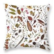 Herbarium Specimen Throw Pillow