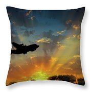 Hercules In The Morning Throw Pillow