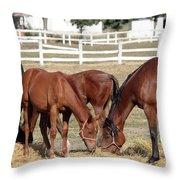 Herd Of Horses Ranch Scene Throw Pillow