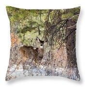 Herd Of Mule Deer In Deep Snow Throw Pillow