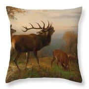Herd Of Red Deer Throw Pillow
