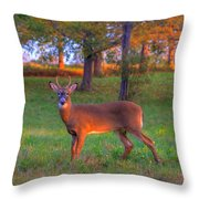 Here And Gone Throw Pillow