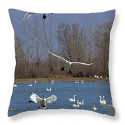 Here Come The Swans Throw Pillow