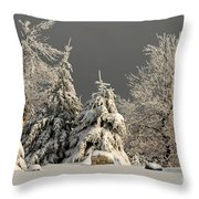 Here Comes The Sun Throw Pillow by Lois Bryan