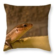 Here Throw Pillow