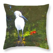 Here Fishy Throw Pillow
