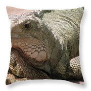 Here Leezard Leezard Throw Pillow