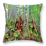 Here There Be Fairies Throw Pillow