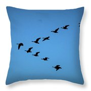 Here They Go Throw Pillow