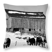 Hereford Barn Bw Throw Pillow