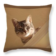 Here's Lookin At You Throw Pillow