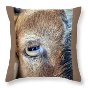 Here's Looking At You Kid - The Truth About Goats' Eyes Throw Pillow