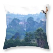 Here's Looking At You Kid.  Giraffe In Kenya Africa Throw Pillow