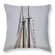 Heritage In The Mist Throw Pillow
