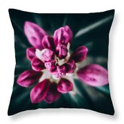 Hermanos Throw Pillow