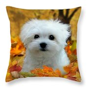 Hermes In The Fall Throw Pillow