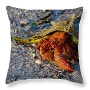 Hermit Crab- Florida Throw Pillow