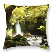 Hermon Stream Nature Reserve Banias Throw Pillow