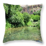 Hermon Stream Nature Reserve Throw Pillow