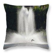 Heron Across A Fountain Throw Pillow