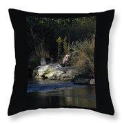 Heron By A Stream Throw Pillow